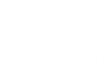 Style&Home Kft